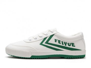 Feiyue 2019 New Sports Low Top Canvas Lover Shoes