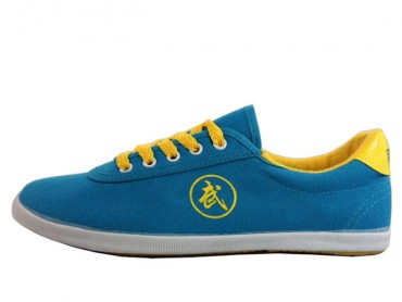Double Star Canvas Tai Chi Shoes Blue