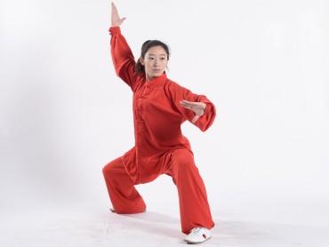 Professional Tai Chi Uniform Summer Woman Red