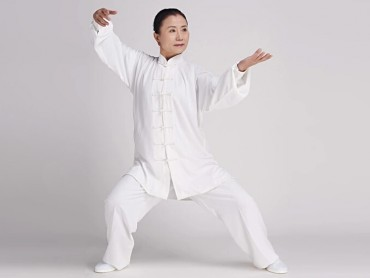 Tai Chi Clothing Cotton and Linen Suit for Women Snow White