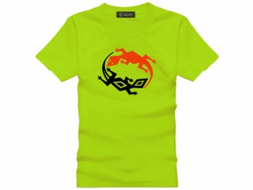Tai Chi T-shirt Lizard Green