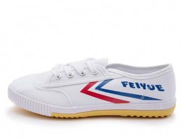 Feiyue Martial Arts Shoes 2015 Version